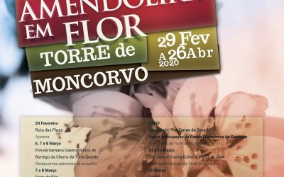 Amendoeira em Flor – Torre de Moncorvo